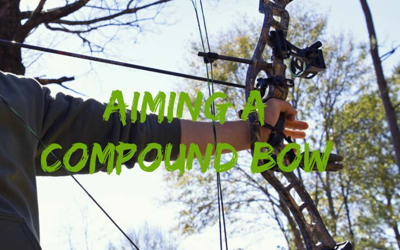 aiming a compound bow